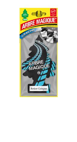 AM_RACING_gamma_2020_Amber_Cologne